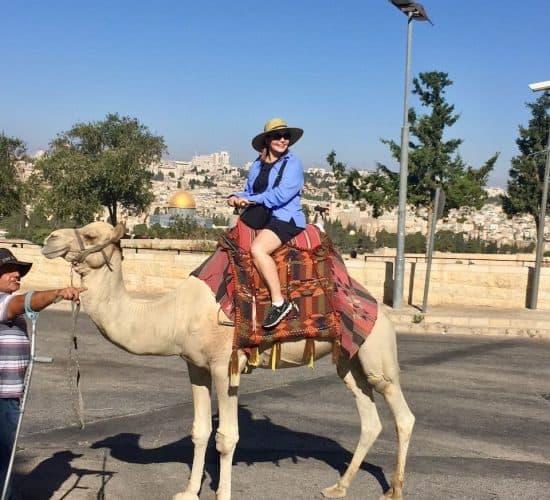 Camel in Jerusalem pilgrimage
