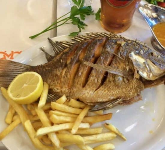 Saint Peter's Fish Holy Land Pilgrimage Lunch